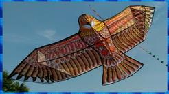 超大180公分金沙老鷹風箏