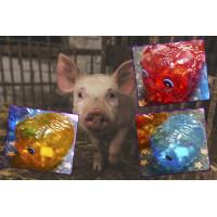 小豬撲滿(600cc容量)胖胖款塑膠材質台灣製造
